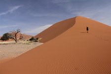 Sos-Dune45-Sab