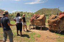 Himba-Getreide