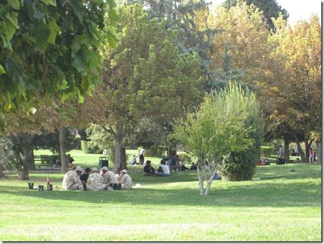 IMG_7303 Azadi-Park kompr.