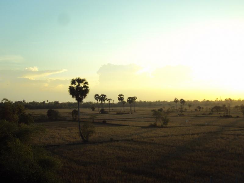 Es ist Trockenzeit, deshalb sind die Reisfelder nicht grün.