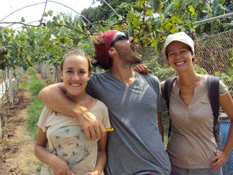 Und nach dem Zugabenteuer: Weinprobe in Kambodschas wohl einzigem Weingut in der Nähe von Battambang!