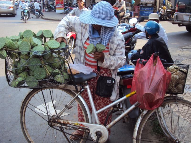Die Kerne der Lotusfrucht kann man knabbern, z.B. auf langen Busfahrten.