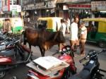 Ahmedabad - Mathma Gandhi Road