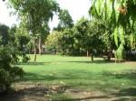 Ahmedabad – Victoria Gardens