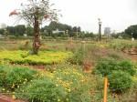 Mumbai – Hanging Gardens (1)
