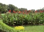 Mumbai – Hanging Gardens (2)
