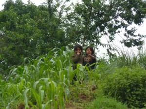 Kinder in Maisfeld