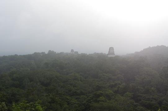 20120112-233436.jpg