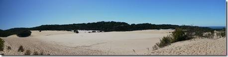 fraser dune