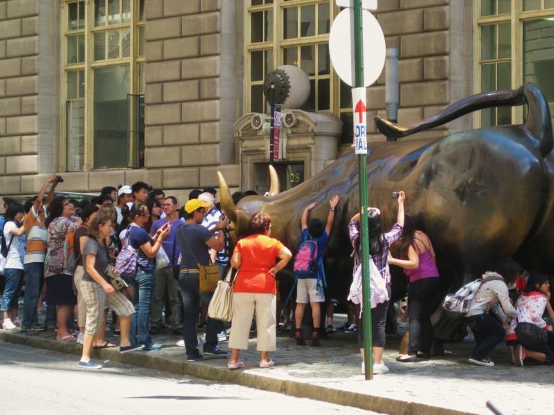 Die Japanertraube von New York - und irgendein Stier
