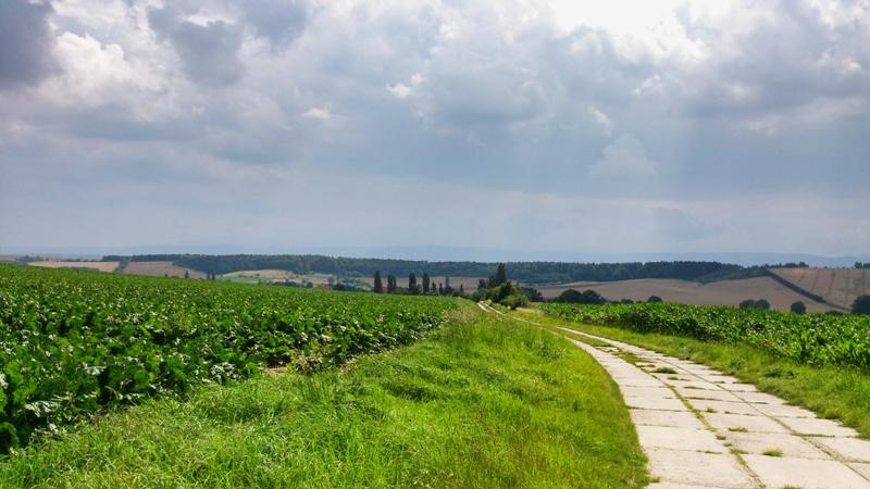 Aussichten gen Harz