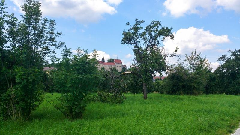 Creuzburg kurz vor Hörschel