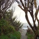 Blick vom Campingplatz auf den Strand