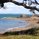 Insel Waiheke 0018