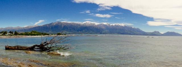 Kaikoura P - vorne Pazifik, hinten Schnee