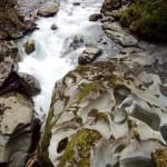 Auf den Weg zum Milford Sound