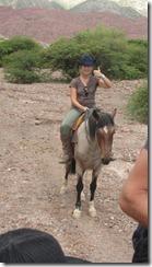 horse tupiza stefan (16) (Kopie)