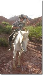horse tupiza stefan (32) (Kopie)