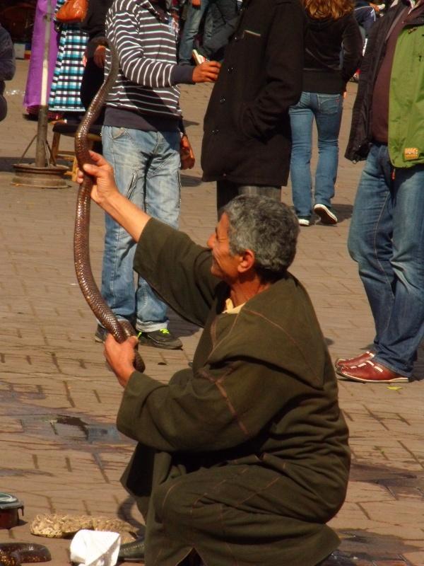 Schlangenbeschwoerer auf dem Djem el Fna- gut, dass die Kamera einen guten Zoom hat...