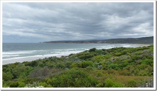 2011-01-17 Great Ocean Road 014