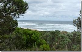 2011-01-18 Great Ocean Road 092