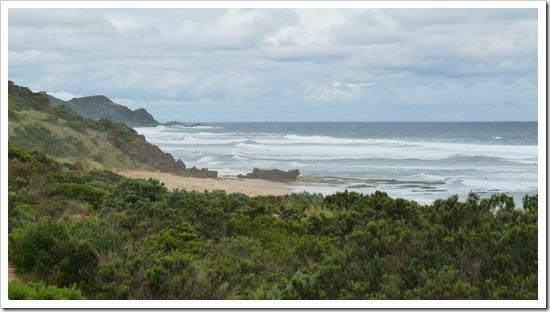 2011-01-18 Great Ocean Road 095