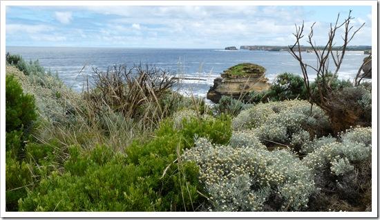 2011-01-19 Great Ocean Road 059