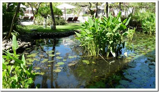 2011-03-17 Bali 013