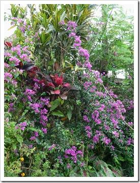 2011-03-18 Bali 090
