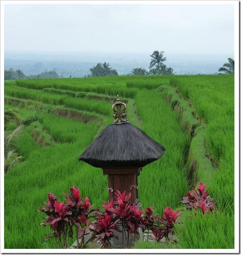 2011-03-18 Bali 093
