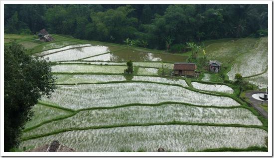 2011-03-18 Bali 123