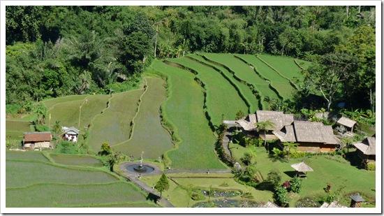 2011-03-19 Bali 006