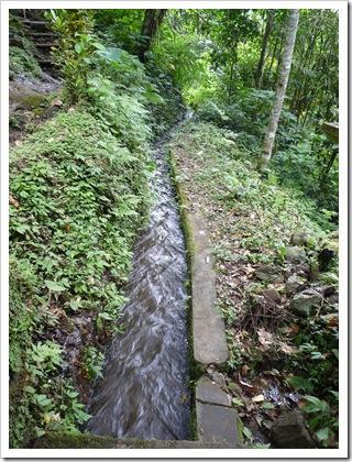 2011-03-19 Bali 051