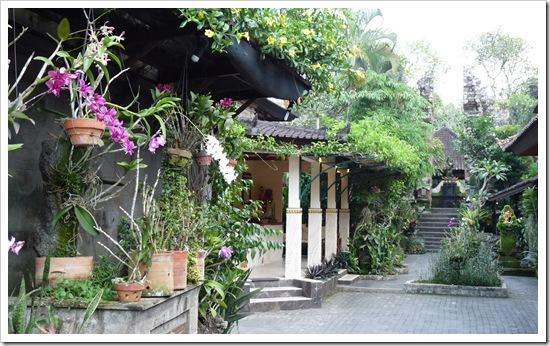 2011-03-21 Bali 054