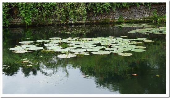 2011-03-22 Bali 161