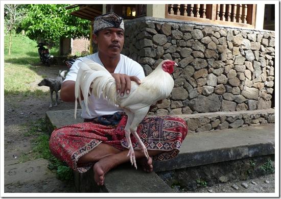 2011-03-23 Bali 002