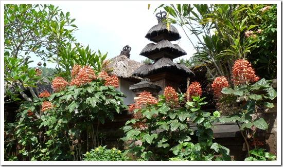 2011-03-23 Bali 012