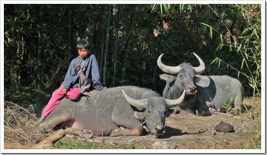 Burma 639