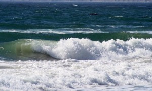 Pacifik-Welle als einmal die Sonne schien!