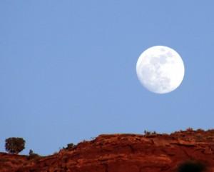 Flower Moon 2011