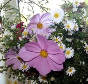 noch mehr Blumen zum Empfang