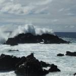 Rapa Nui (91)