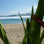 Lombok13