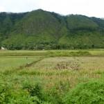 Lake Toba10