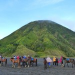 Mt Bromo16