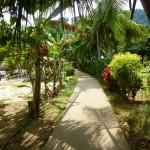 Pulau Tioman2