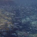 Pulau Tioman23