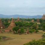 Bagan40