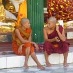 Yangon24