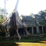 Angkor19